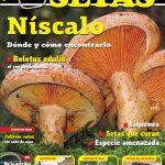Sumario nº1 Cesta y Setas: lactarius deliciosus y boletus edulis