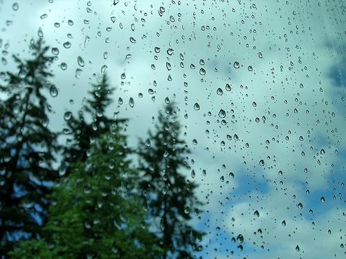 lluvias otoño y setas