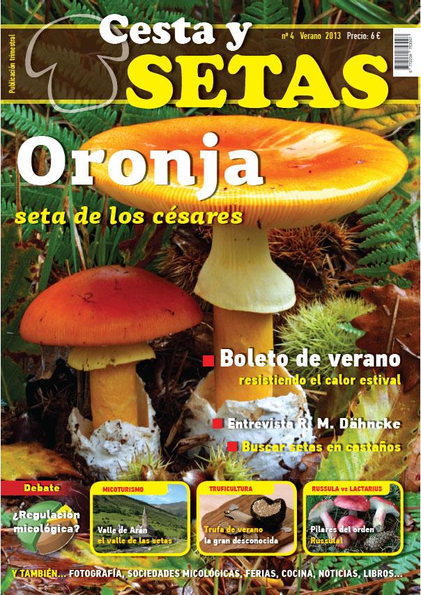 Amanita caesarea (Oronja, Ou de reig) y Boleto de verano (Boletus aestivalis)