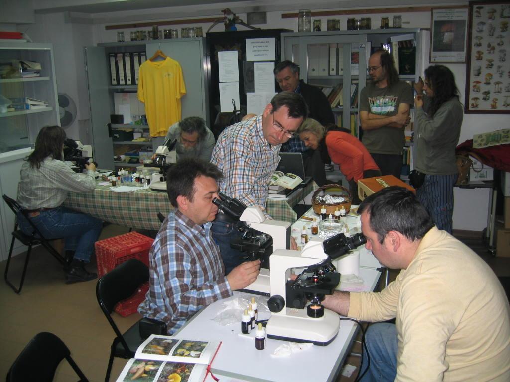 Curso de iniciación a la microscopía