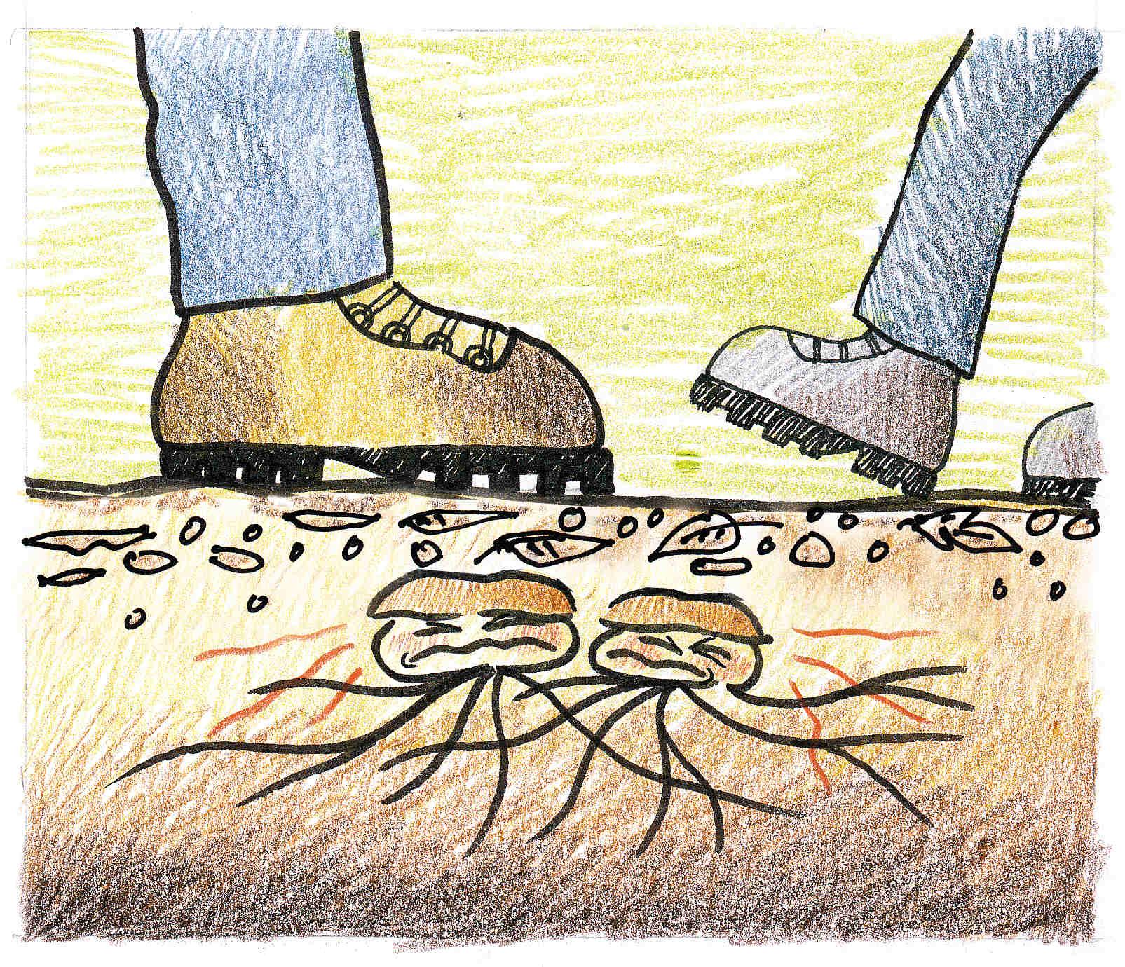 Ilustración Gorka Gorospe - El continuo trasiego de personas puede compactar en exceso los suelos