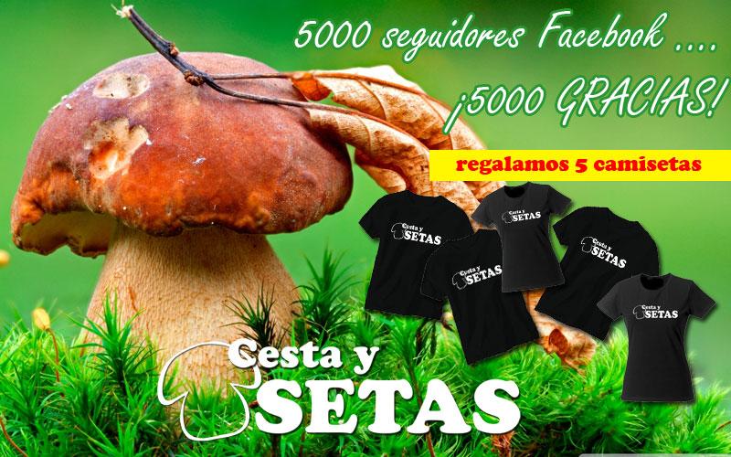5000facebook