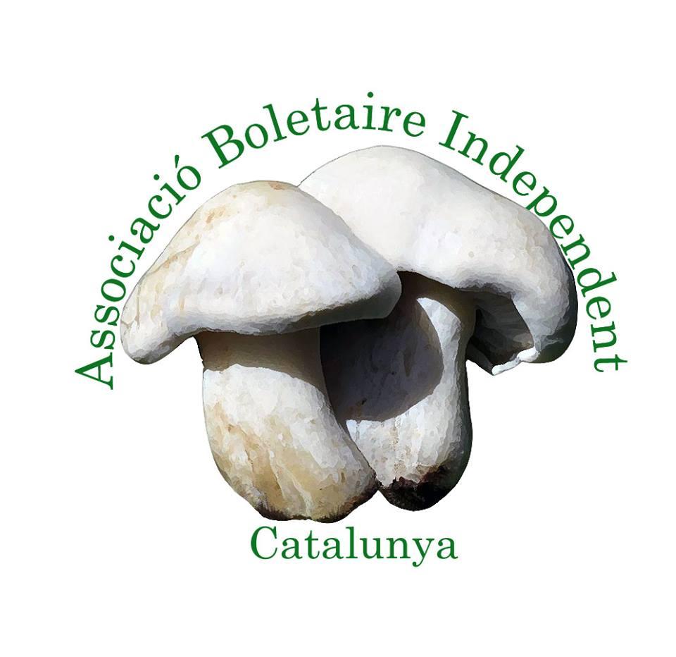 Associacio Boletaire Independent