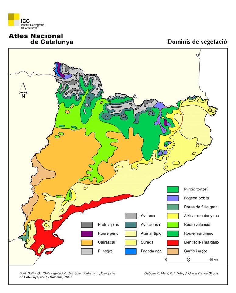 Dominios de vegetación Cataluña