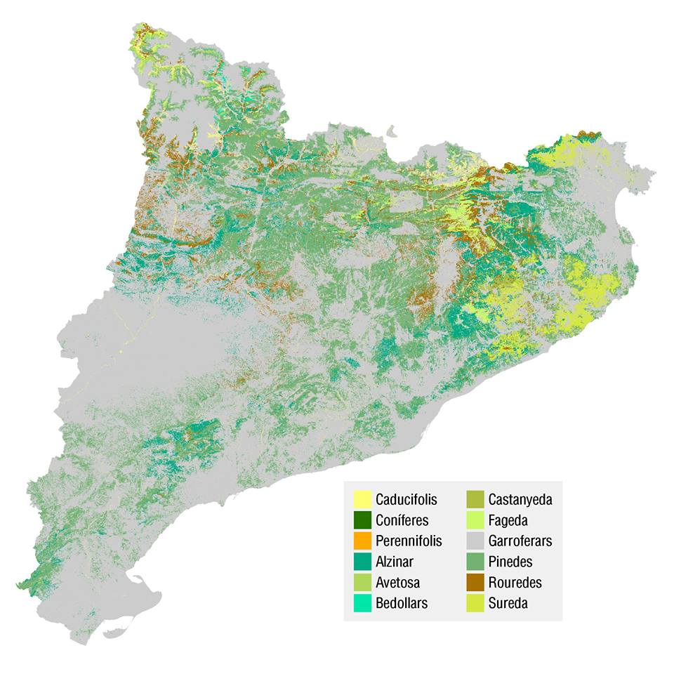 dominios vegetacion cataluña