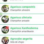 setamania pro app