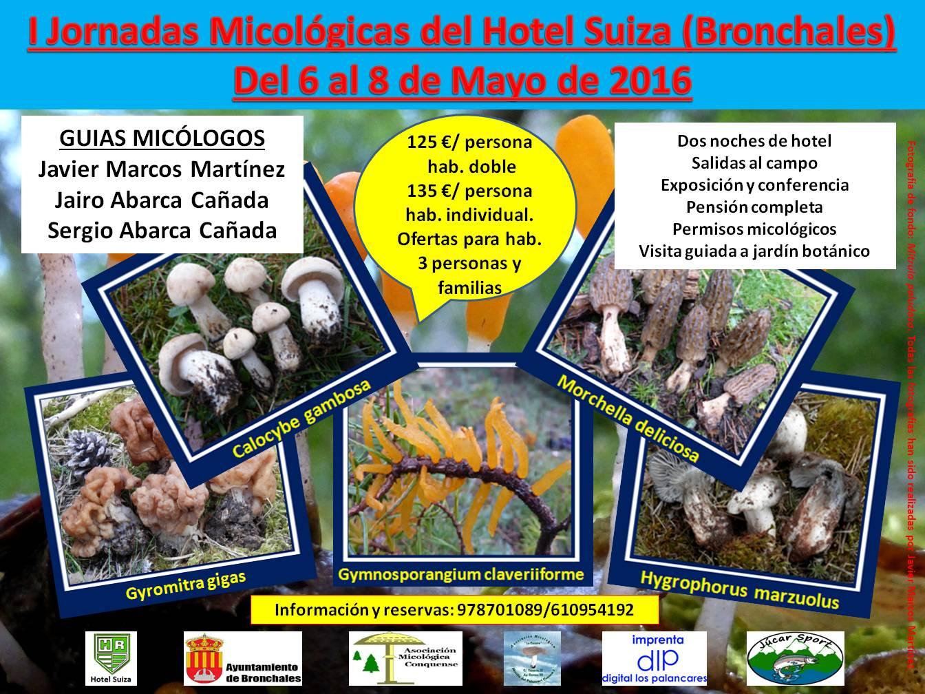 Jornadas micológicas Bronchales