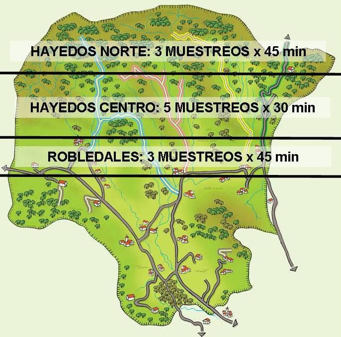 mapa-hayedos-ultzama2