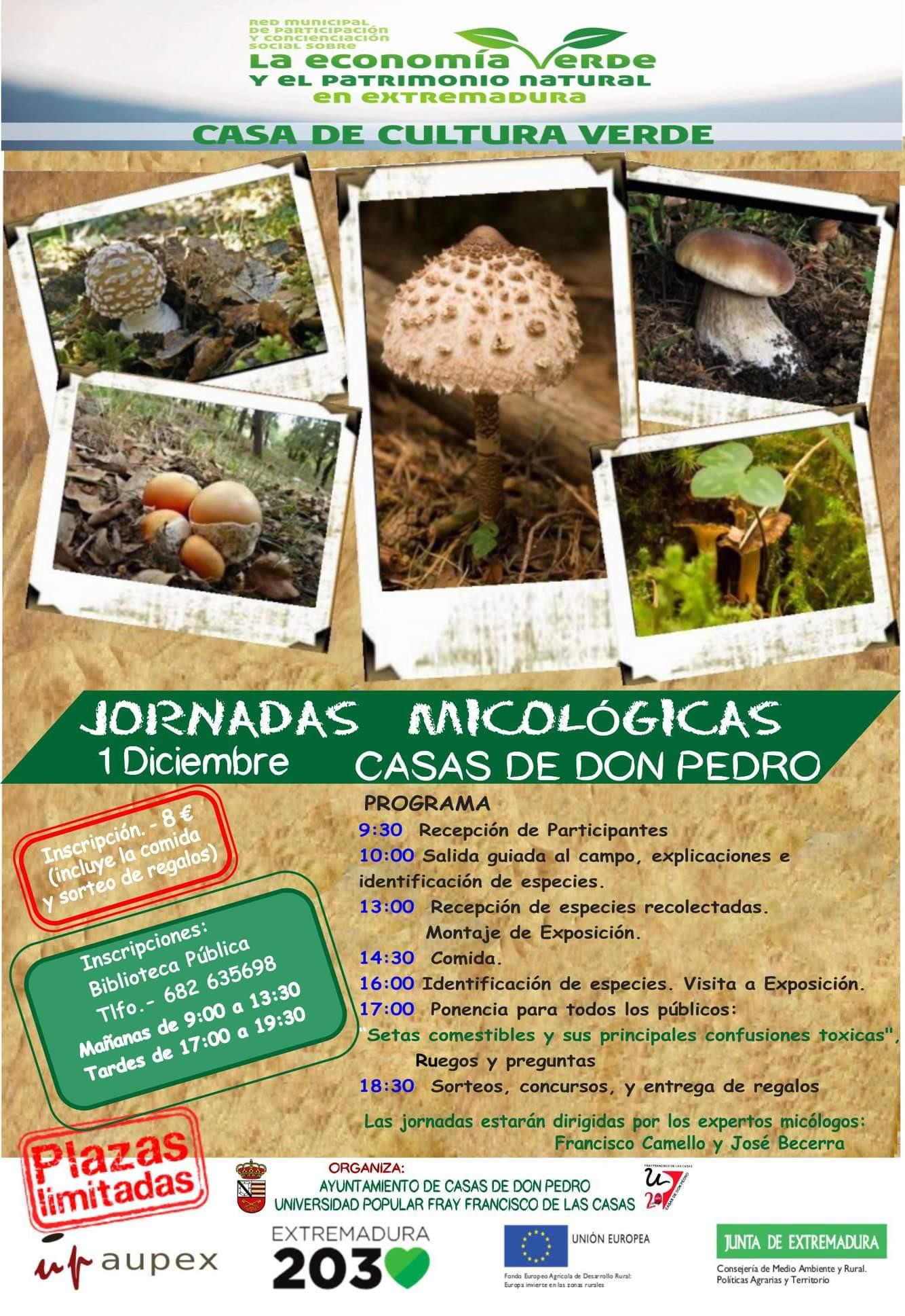Jornadas micol gicas casas de don pedro badajoz cesta y setas - Casas de don pedro badajoz ...