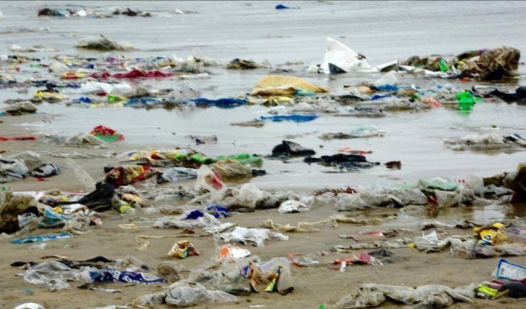 Acumulación de plásticos en la orilla del mar. Crédito: MARTÍN LEÓN (2019)