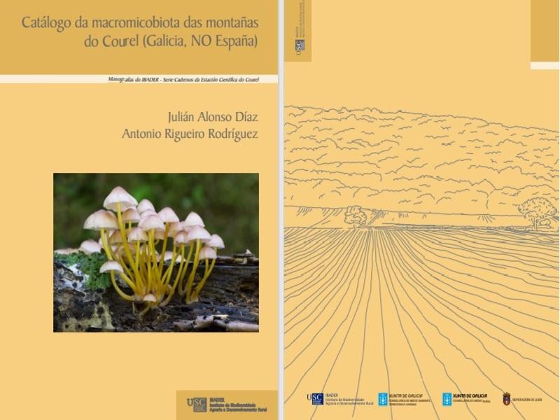 Portada y contraportada del catálogo. Crédito ALONSO & RIGUEIRO (2020)